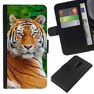 Stuss Case / Funda Carcasa PU de Cuero - Big Cat Naturaleza Animal África - LG G2 D800