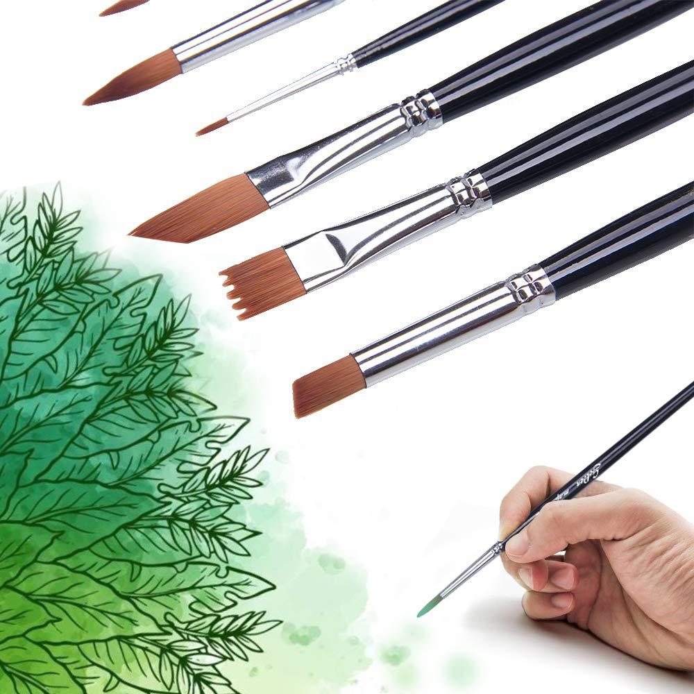 point rond, angle, /éventail, filbert Jeu de pinceaux 12 pi/èces pour la peinture acrylique /à lhuile et /à laquarelle Diff/érentes tailles de brosses multi-usage Forme