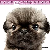 THE DOG Wall Calendar 2018 Pekingese