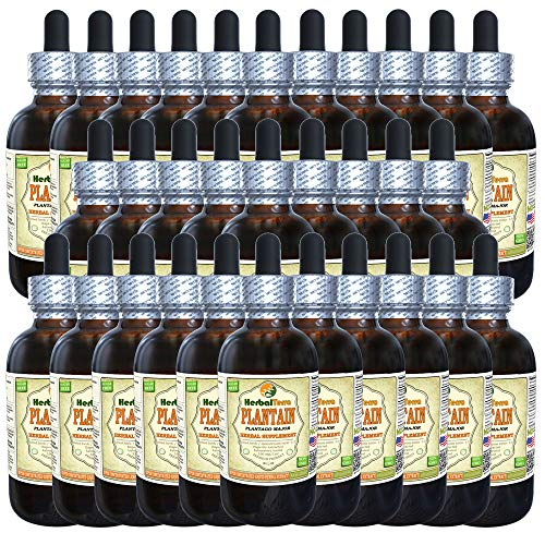 (Plantain (Plantago Major) Tincture, Organic Dried Leaves Liquid Extract (Brand Name: HerbalTerra, Proudly Made in USA) 30x2 fl.oz (30x60 ml))