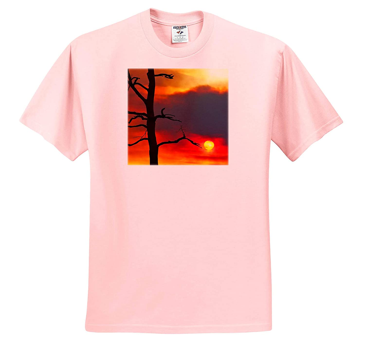 Nature - T-Shirts Photo of The Sun Setting in Smoke After a fire in The Pine barrens 3dRose Stamp City