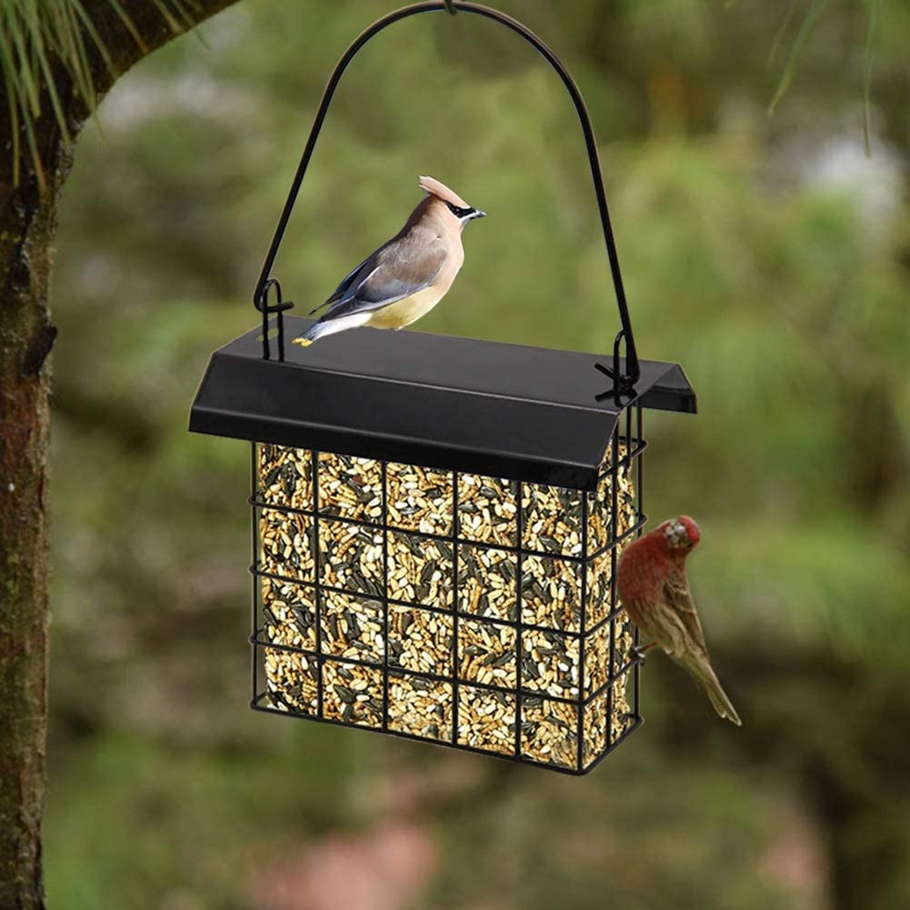 FORUP Suet Bird Feeder, Hanging Suet Feeder, Single Suet Cake Bird Feeder, One Suet Capacity