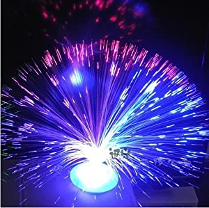 Image result for fibre optic lamp working model