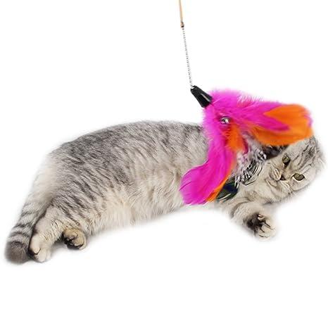 zuckerti gato juguete interactivo Varilla elástica con papel arrugado plumas parte Pesca Sisal Ratones para jugar