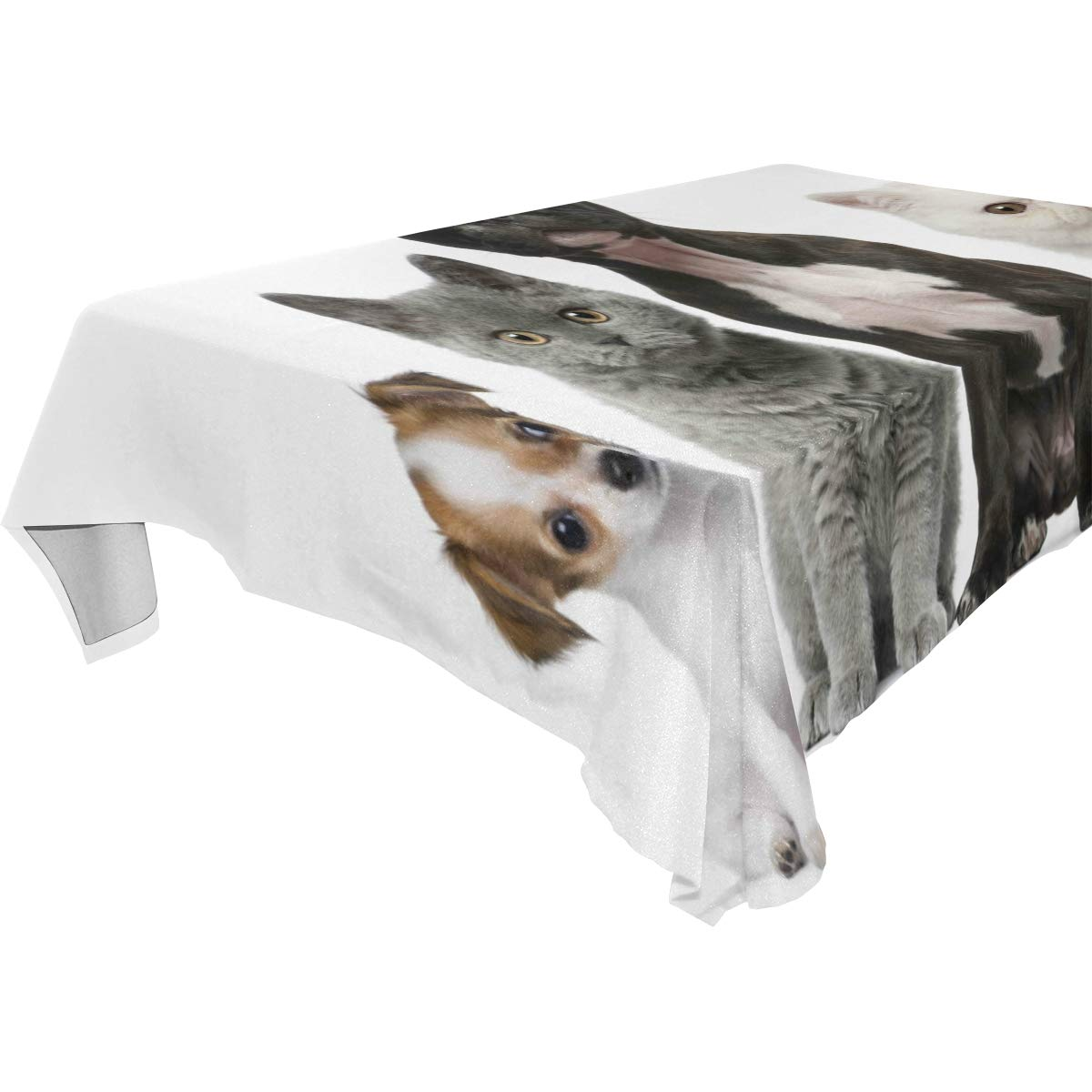 Modern Rectangle Square Tablecloth 54x54 inches Cute Animals Cats Dogs Puppy Baby Kitten Cover for Dinners Parties Banquet or Picnic