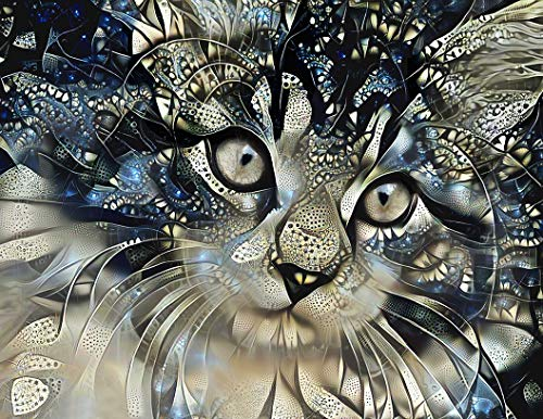 Maine Coon Cat Fine Art Print - Abstract Wall Decor Kitten Poster 8.5 x 11