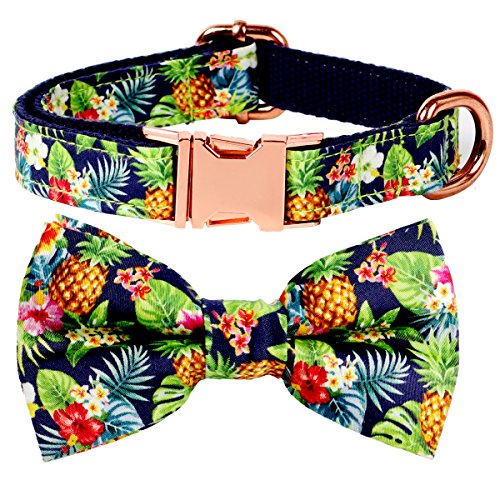 - csspet Pineapple Cat and Dog Collar Bow Tie, Detachable Bowtie, Adjustable Collar for XS Small Dogs Cat