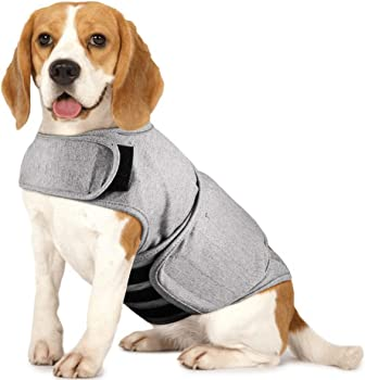 Royal Wise Dog Anti-Anxiety Vest