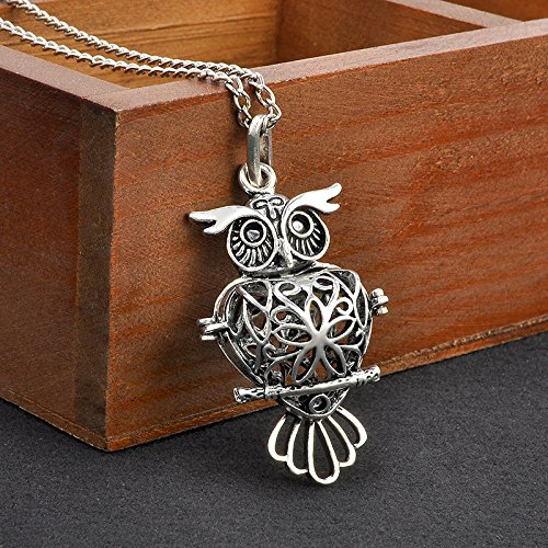 PromsupLocket Necklace Perfume Fragrance Essential Oil Aromatherapy Diffuser NEW