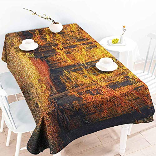 EwaskyOnline Large Rectangular Tablecloth,Forest Magical Fall Photo in National Park with Vivid Leaf Plant Eco Earth Mystical Theme,Party Decorations Table Cover Cloth,W52x70L, Orange Brown