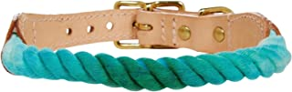 product image for Found My Animal Collar - Teal Fade - Medium