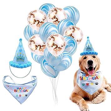 Amazon.com: DreamJ - Juego de 17 decoraciones de cumpleaños ...