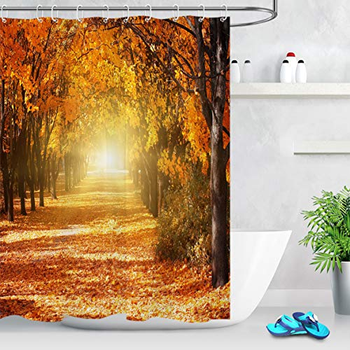 LB Autumn Shower Curtain Fall Theme Deciduous Tree Leaves Covered Pathway in Sunshine Romantic Fall Season Shower Curtain 72x72 Inch Waterproof Fabric with 12 Hooks ()