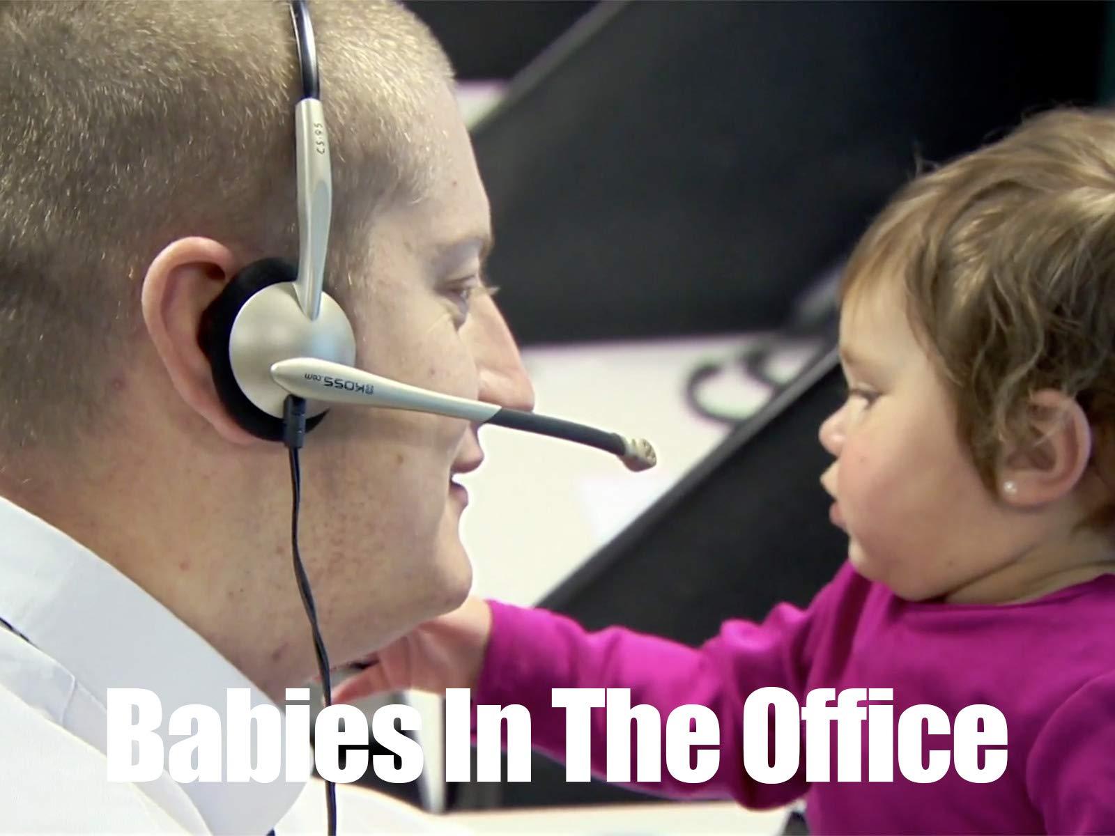 Babies In The Office - Season 1