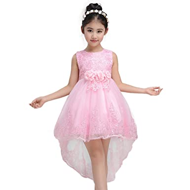 DREAMOWL Kids Girls Princess Floral Lace Big Bow Party Wedding Gown Flower Dress Pink