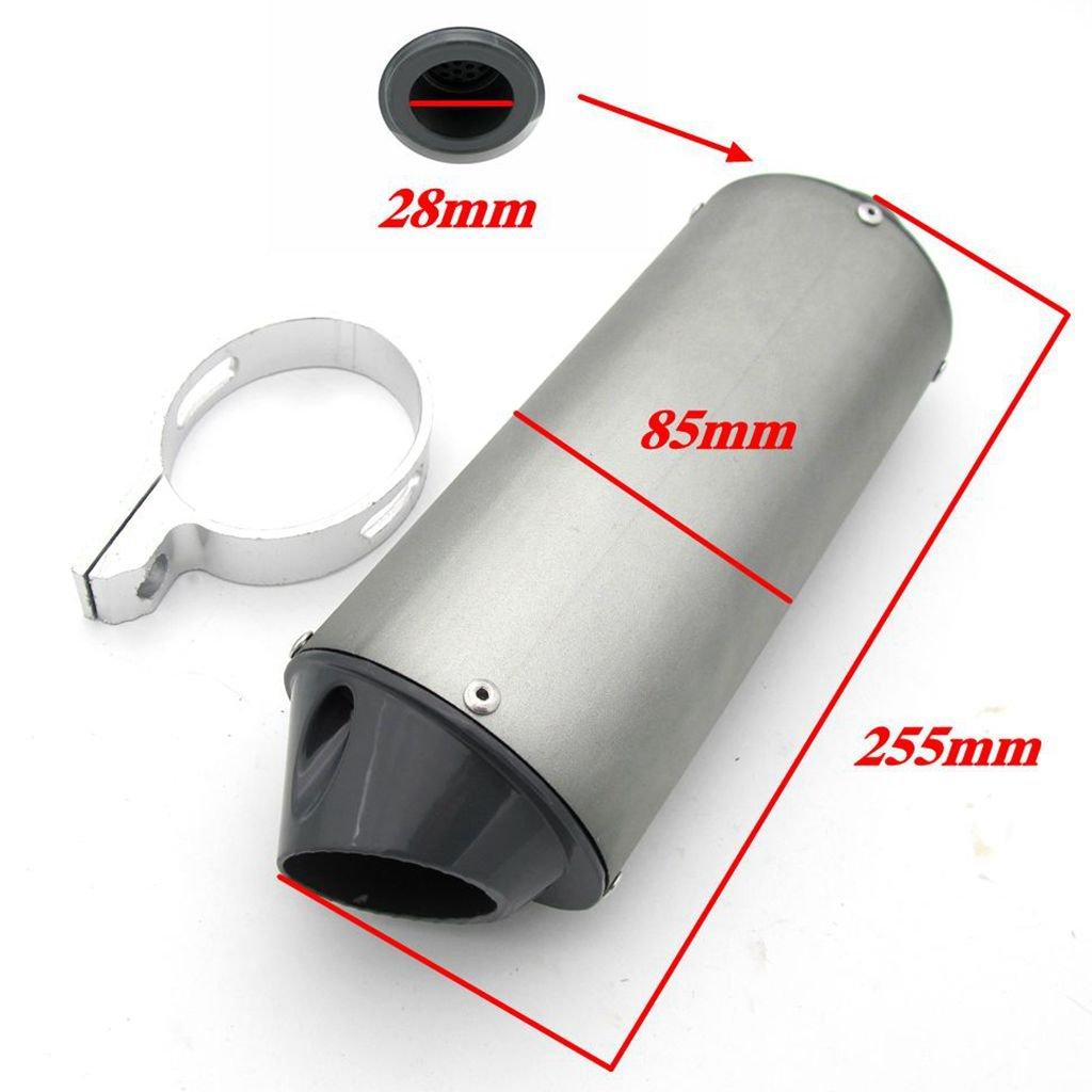 Homyl 28mm Muffler Exhaust Pipe/&Clamp 125cc 140cc 150cc PIT PRO Quad Bike Dirt ATV