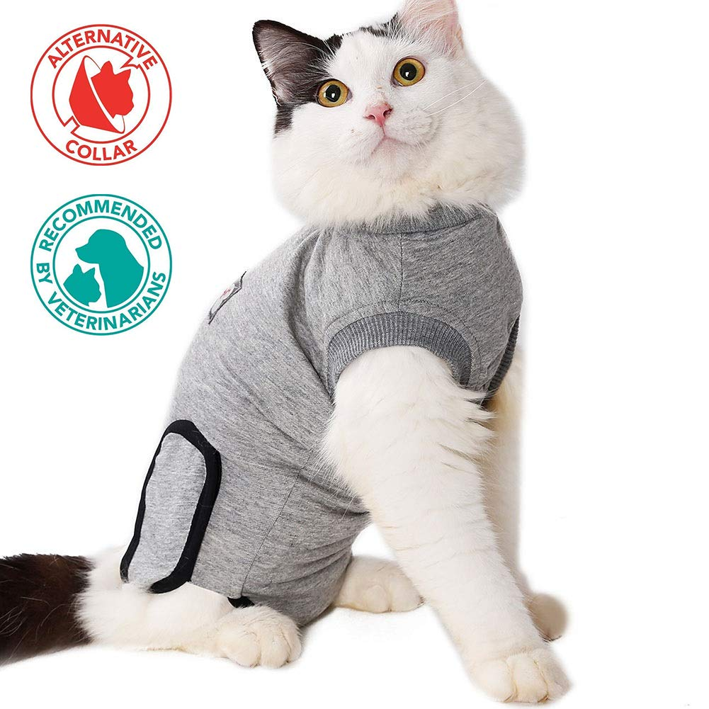 FOREYY Professional Cat Recovery Suit for Abdominal Wounds and Skin Diseases, Breathable E-Collar Alternative for Cats and Dogs, After Surgey Wear, Recommended by Vets (XXS) by FOREYY