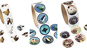 FX 3 Rolls of 100 - LIVE ANIMAL PHOTO Stickers (300 Total) FARM Zoo & Sea Life FISH - Wildlife NATURE SCIENCE Teacher Classroom PARTY Favors REWARDS
