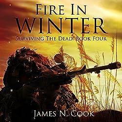 Fire in Winter