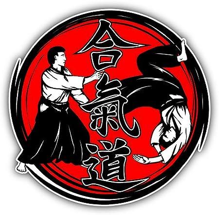 Aikido Hieroglyph Fighters Pegatina de Vinilo Para la Decoracion del Vehiculo 12 X 12 cm