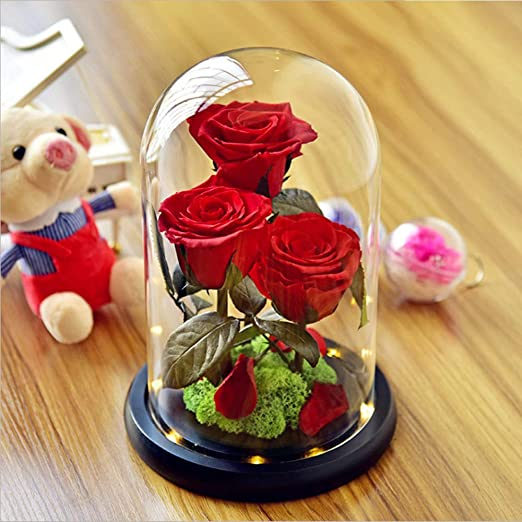 Eternal RED Rose in Glass Dome Immortal Preserved Rose Mothers Day Perfect Gift