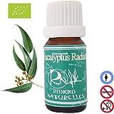 Ressources Naturelles - Huile Essentielle Eucalyptus Radiata Bio 30 Ml
