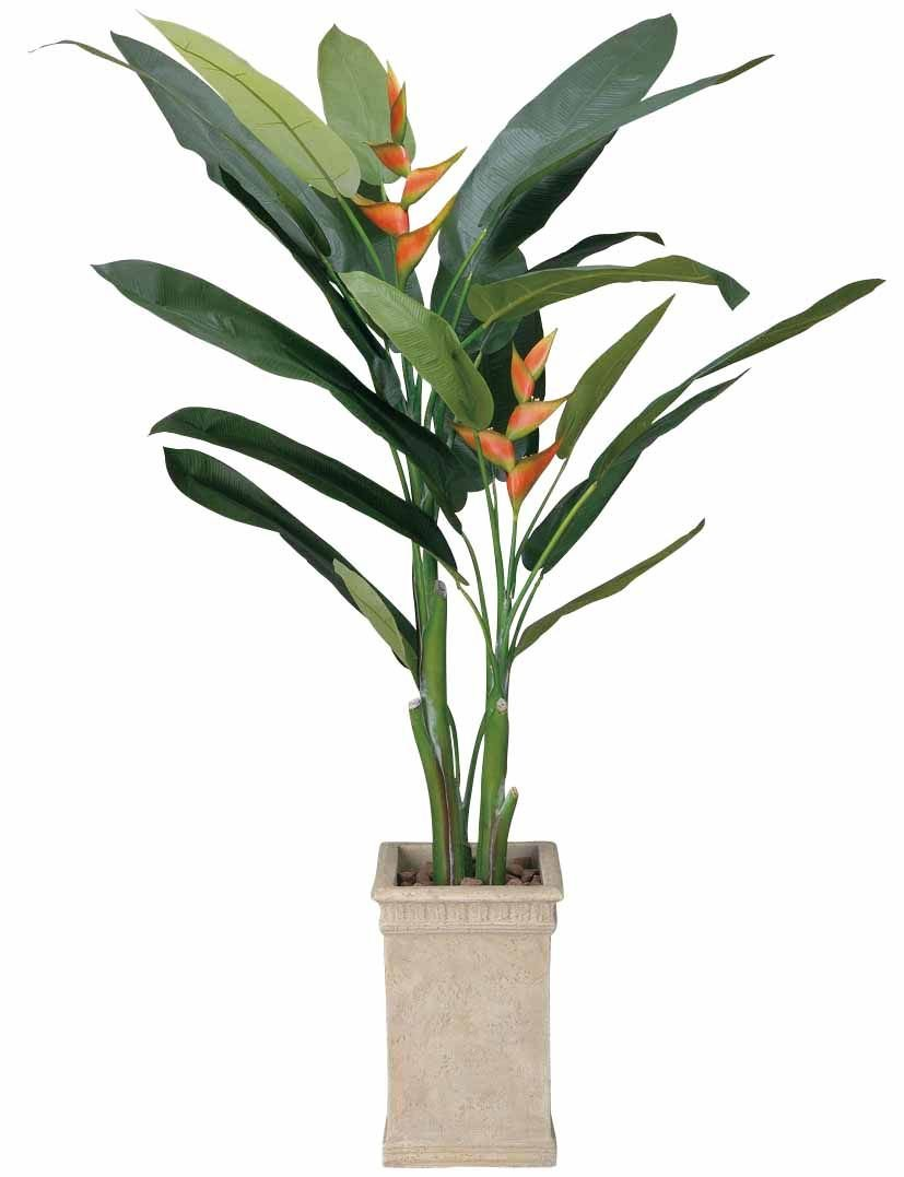 造花 観葉植物 「ヘリコニア 200cm」 光触媒(空気清浄) インテリアグリーン 鉢植え B078S7B1RL
