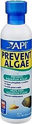 API PREVENT ALGAE Aquarium Algae Control Solution 118 ml Bottle