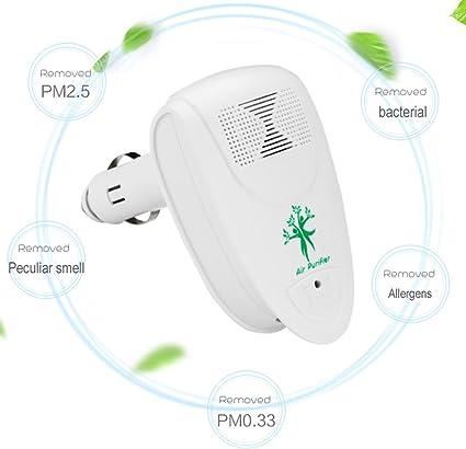 Amazon.es: Ruichenxi Purificador aire coche Purificador de aire ...