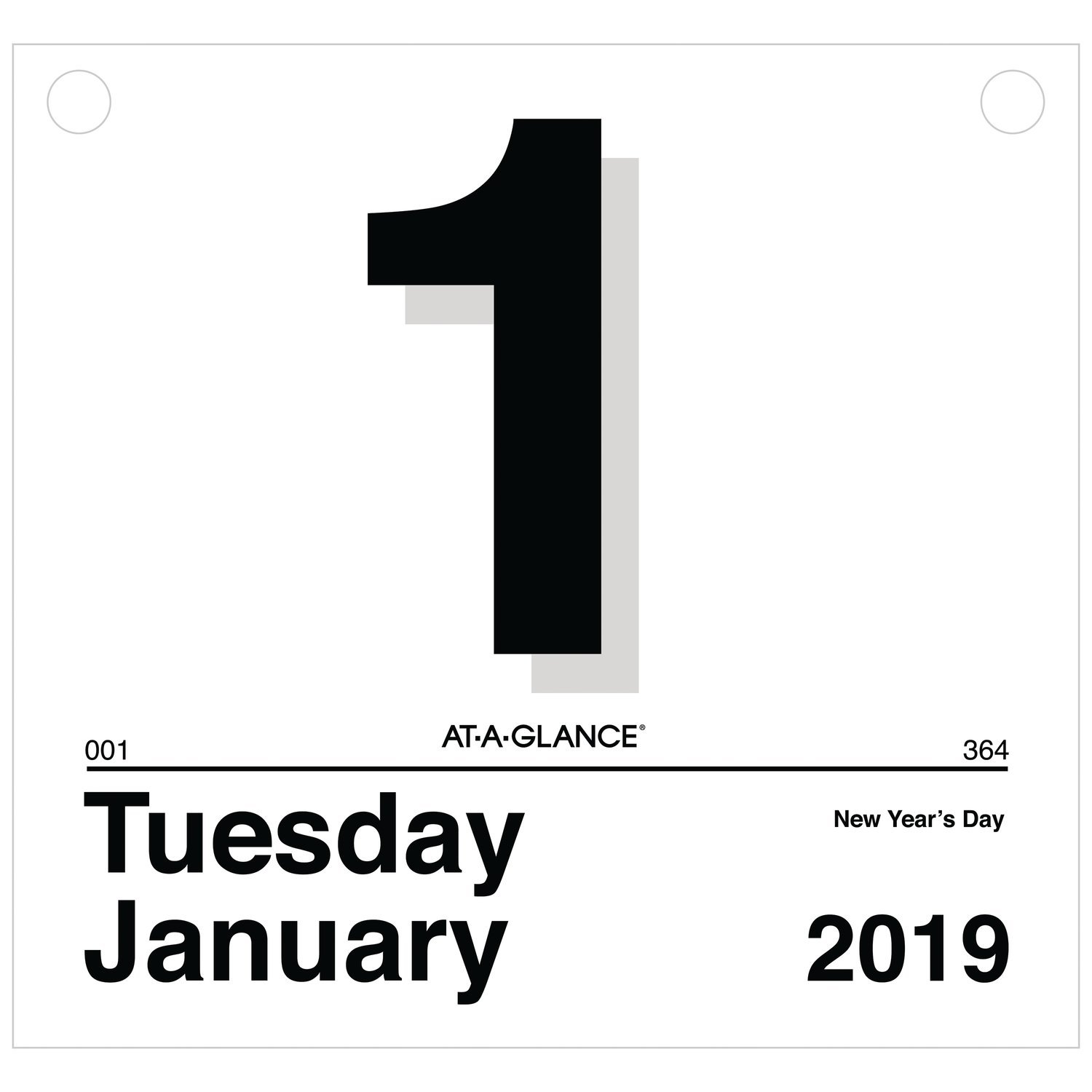 AT-A-GLANCE 2019 Daily Wall Calendar Refill, 8-1/2'' x 8'', Small, One Page Per Day, ''Today Is'' Design (K4-50)