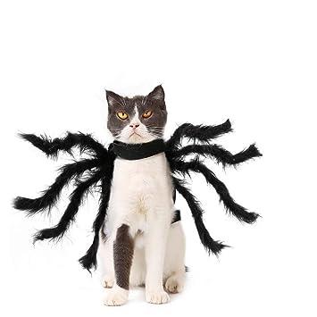 POPETPOP Disfraz de araña de Perro-Disfraz de Mascota de araña de ...