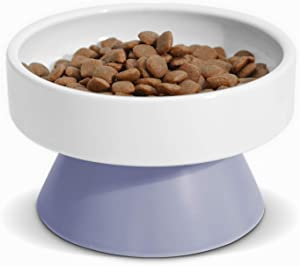ComSaf Cat Ceramic Raised Food Bowls, Elevated Pet Feeder, Protect Pet's Spine, for Dog Kitty Puppy Rabbit