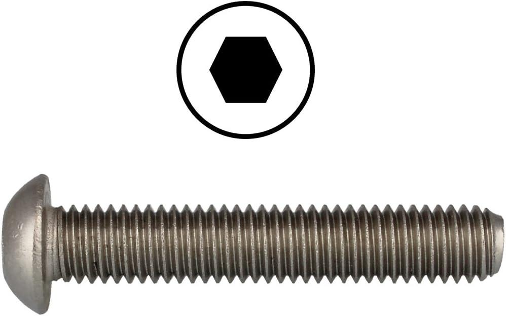 ISO 7380 ISK D/´s Items/® - M8x100 Zaunbauschrauben V2A 5 St/ück Linsenkopfschrauben Flachkopfschrauben mit Innensechskant Edelstahl A2 - - Rundkopfschrauben Linsenschrauben