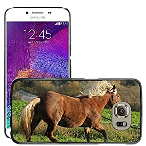 Super Stella Slim PC Hard Case Cover Skin Armor Shell Protection // M00145440 Horse Animal Pferdeportrait Nature // Samsung Galaxy S6 (Not Fits S6 EDGE)