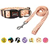 QQPETS Dog Collar and Leash Set, Adjustable Soft Collar Personalized with Quick Release Buckle+Unique Heavy Duty 5ft Leash for Puppy Small Medium Large Dogs Outdoor Walking Trainin