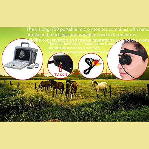 Semoic 80 inch Monocular Mini Micro-Display HD Night Vision with Headband Goggles AV Series for FPV Monitor by Semoic (Image #7)