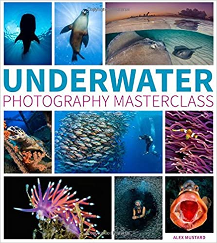 Learn all you need to know to photograph the amazing creatures and landscapes that lie beneath the surface.
