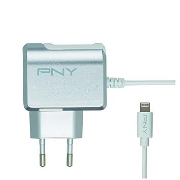 PNY P-AC-LN-SEU01-RB Interior Gris, Color Blanco: Amazon.es ...