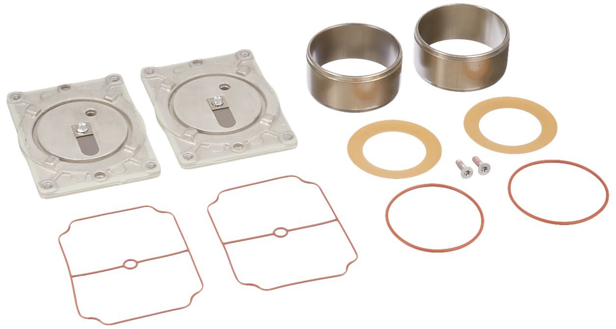 Welch Vacuum 2563K-03 Service Kit, Two-Head, For Use with Pump Model 2563