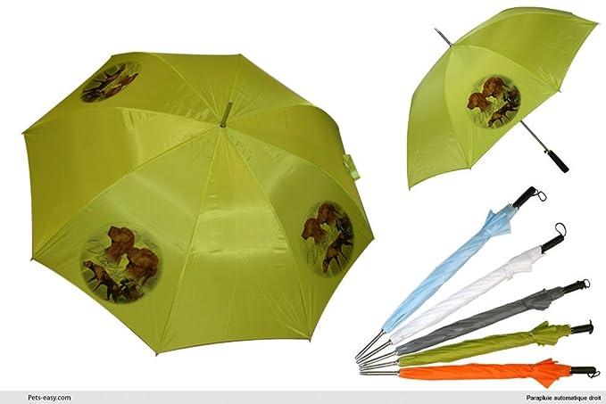 Paraguas de Golf, diseño de perro en francés, diseño de braco húngaro, verde