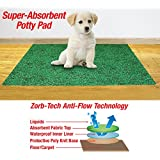 Collections Etc-leak Resistant Potty Pad for Dogs-20...