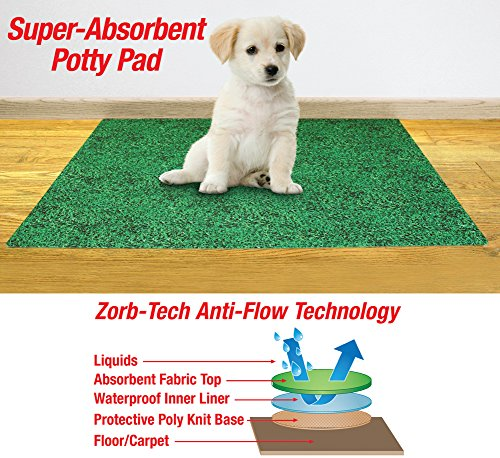 """Collections Etc-leak Resistant Potty Pad for Dogs-20""""*28""""-green"""