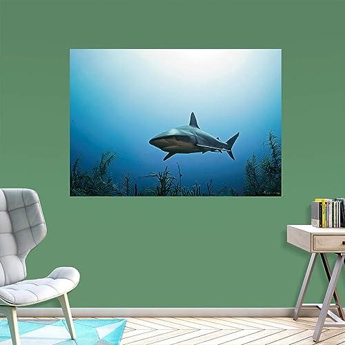 Shark Underwater Mural
