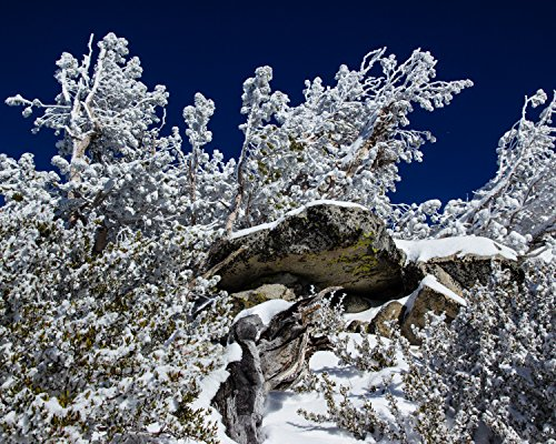 Winter Rock Refuge, Heavenly Ski Resort, South Lake Tahoe, Nevada - Framed Photo Art Print, 11