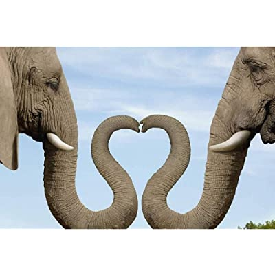 AZZYZ 5D Diamond Embroidery Elephant Courtship DIY Diamond Painting Best Birthday Present Puzzle Mosaic Crafts 12x16 inch: Arts, Crafts & Sewing