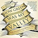 How Green Was My Valley Audiobook by Richard Llewellyn Narrated by Ralph Cosham