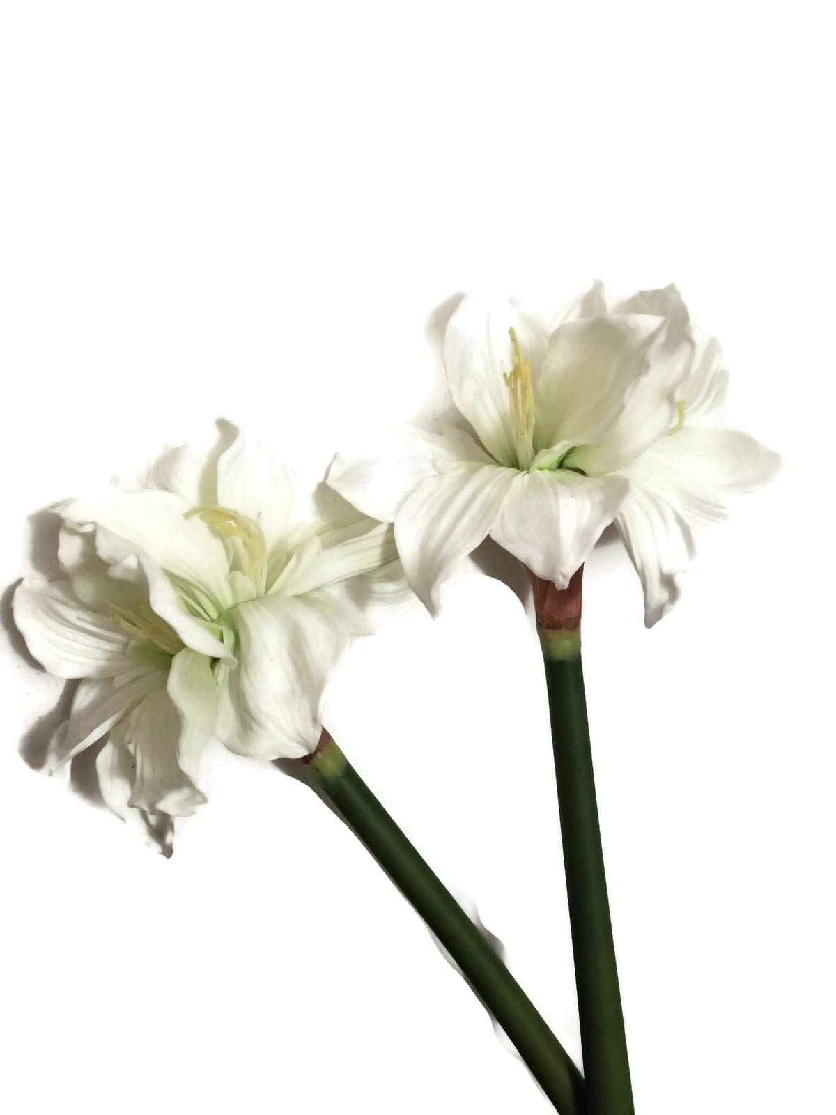 Floral-Kingdom-Real-Touch-30-XLarge-Artificial-Amaryllis-Flowers-for-vase-Arrangements-HomeOffice-Decor-Pack-of-3