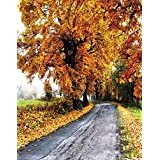 5x7ft Autumn Fall Yellow Tree Leaves Photography Background Computer-Printed Vinyl Backdrops