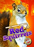 Red Squirrels (Blastoff Readers. Level 3)