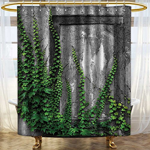 NALAHOMEQQ Mystic House Decor Ivy on Wall with Aged Antique